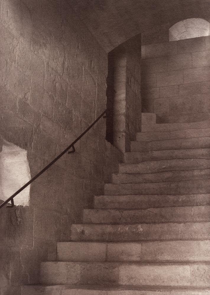 Sylvacane_escalier